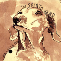 The Spinto Band - Did I Tell You