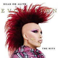 Dead Or Alive - Evolution: The Hits