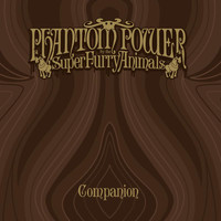 Super Furry Animals - Phantom Power