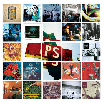 Toad The Wet Sprocket - P.S.  (a Toad retrospective)