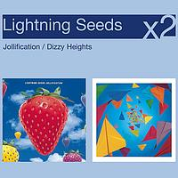 Lightning Seeds - Jollification/Dizzy Heights