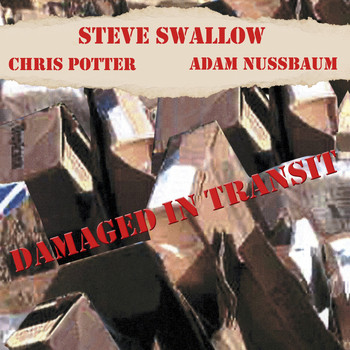 Steve Swallow - Damaged In Transit
