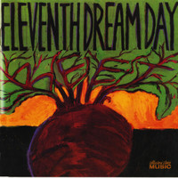 Eleventh Dream Day - Beet