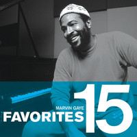 Marvin Gaye - Favorites