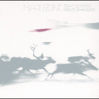 Mari Boine - Eight Seasons / Gavcci jahkejudgu
