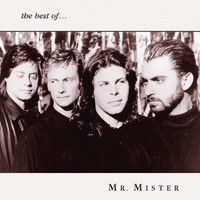 Mr. Mister - The Best of Mr. Mister