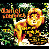 Daniel Küblböck - The Lion Sleeps Tonight