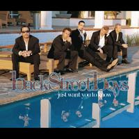 Backstreet Boys - Just Want You To Know Jason Nevins Remix
