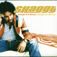 Shaggy - Strength Of A Woman (International Version)