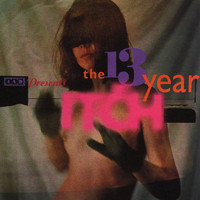 Various Artists - 4AD Presents the 13 Year Itch