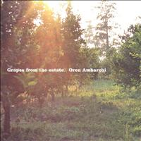 Oren Ambarchi - Grapes from the Estate