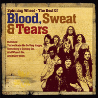 Blood, Sweat & Tears - The Best Of
