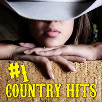 Various Artists - #1 Country Hits