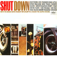 Various Artists - Shut Down