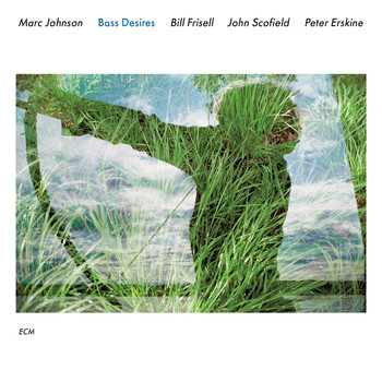 Marc Johnson - Bass Desires