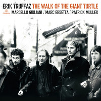 Erik Truffaz - The Walk Of The Giant Turtle