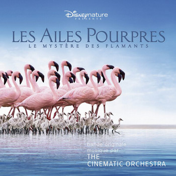 The Cinematic Orchestra - The Crimson Wing: Mystery Of The Flamingos