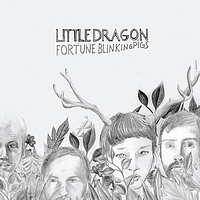 Little Dragon - Fortune/Blinking Pigs (Bundle)
