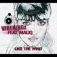 Vibekingz - Like The Wind (International 2-Track)