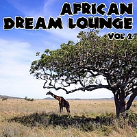 African Tribal Orchestra - African Dream Lounge - Volume 2