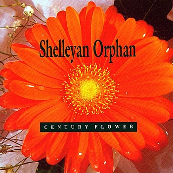 Shelleyan Orphan - Century Flower