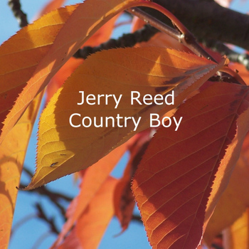 Jerry Reed - Country Boy