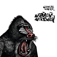 Charlie Hunter - Baboon Strength