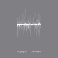 Kangding Ray - Automne Fold