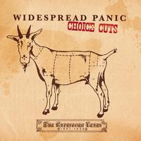 Widespread Panic - Choice Cuts: The Capricorn Years 1991-1999