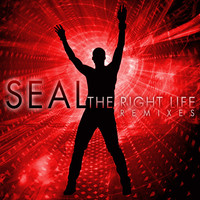 Seal - The Right Life (The Remixes)
