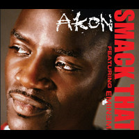 Akon - Smack That (NBA)