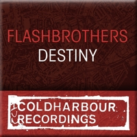 Flash Brothers - Destiny