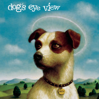 Dog's Eye View - DAISY