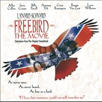 Lynyrd Skynyrd - Freebird The Movie