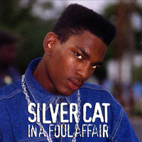 Silver Cat - In A Foul Affair