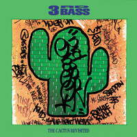 3rd Bass - The Cactus Revisited