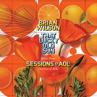 Brian Wilson - That Lucky Old Sun: AOL Sessions