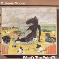 R. Stevie Moore - What's The Point?!!