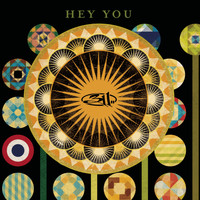 311 - Hey You