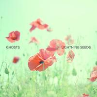 Lightning Seeds - Ghosts