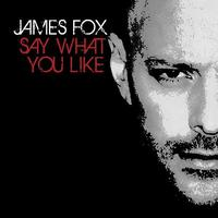 James Fox - Say What You Like
