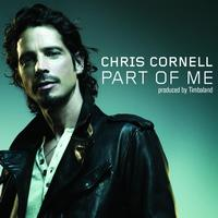Chris Cornell - Part Of Me (DJ Kleerup Remix - International Version)