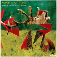 Wave Machines - Wave If You're Really There