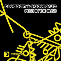 DJ Gregory & Gregor Salto - Push In The Bush