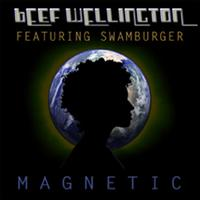 Beef Wellington - Magnetic