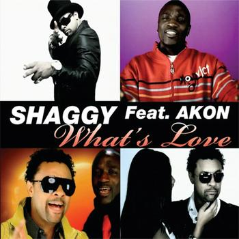 Shaggy featuring Akon - What's Love