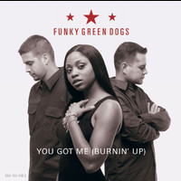 Funky Green Dogs - You Got Me (Burnin' Up)