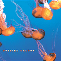 Unified Theory - Unified Theory