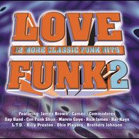 Various Artists - Love Funk 2
