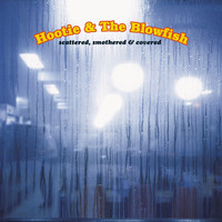 Hootie And The Blowfish - Scattered, Smothered And Covered
